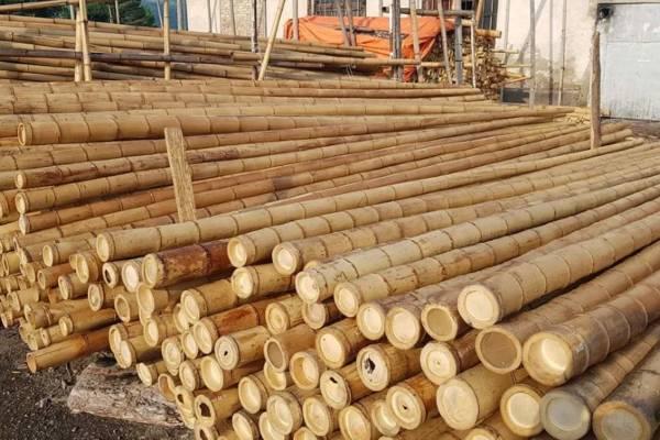 Bamboepalen foto stapel buiten