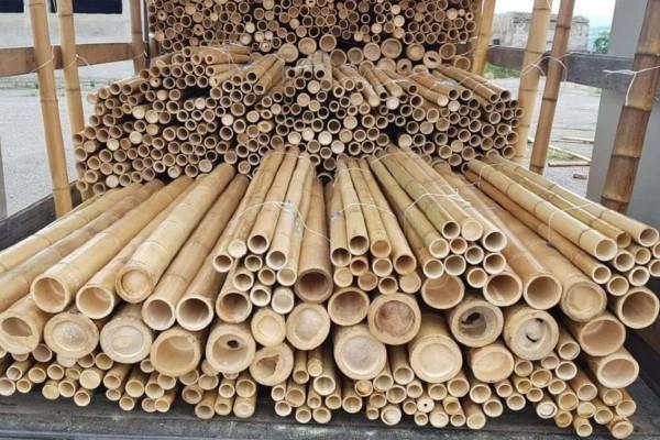Bamboepalen foto stapel vooraanzicht
